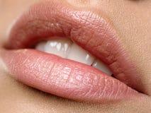 Lippen stock photo