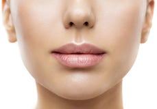 Lippen, Frauen-Gesichts-Mund-Schönheit, schöne Haut-volle Lippennahaufnahme lizenzfreie stockfotos
