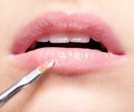 Lippenmake-up Stockbild