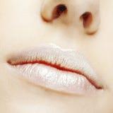 Lippenmake-up Stockfotos