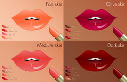 Lippenstiftkleuren voor elke huidtoon Stock Fotografie