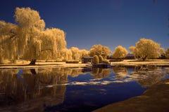 Lippold Park, Crystal Lake, Illinois. Lippold Park on Route 176 in Crystal Lake, Illinois, photographed in infrared Stock Photography