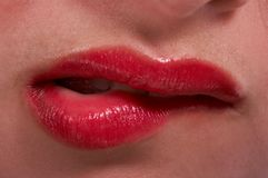Lips Stock Photography