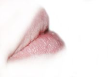 Lips. Natural lips Royalty Free Stock Images