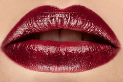 Lips. Color lipstick. Close up. Royalty Free Stock Image