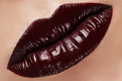 Lips Royalty Free Stock Image