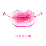 Lips. Hand drawn watercolor vector illustration of lips Stock Photos