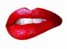 Lips - illustration stock illustration