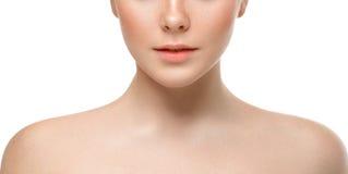 Lips nose chin cheeks. Beauty face portrait young beautiful woman Stock Photography