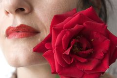 Lips and rose Stock Image