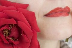 Lips and rose Stock Photos