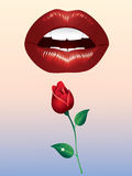 Lips and roses. Royalty Free Stock Photography