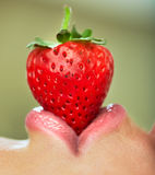 Lips with strawberry. Stock Images