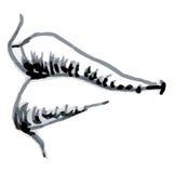 Lips (vector) Stock Image