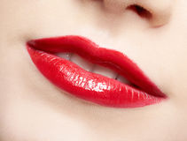 Lips zone makeup Royalty Free Stock Image