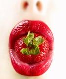 Lips3 rosso Fotografie Stock