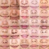 Lipstick on female Mouths. Set of Women`s Lip royalty free stock photo