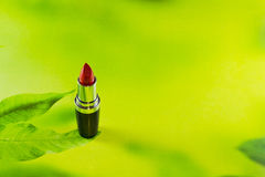 Lipstick. On a green background is on the petal Royalty Free Stock Photos