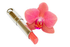 Lipstick with orchid flower Stock Image