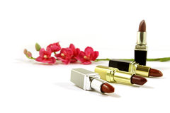 Lipsticks and flowers. Isolated Stock Photo