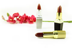 Lipsticks and flowers. Isolated Royalty Free Stock Photo