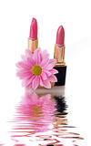 Lipsticks and water. Pink  lipsticks on white background Stock Images