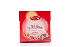 Lipton Tea Beverage Stock Image