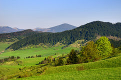 Liptovska Luzna - Spring landscape Stock Photo