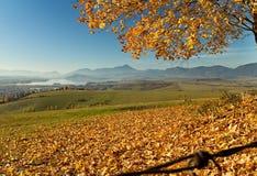 Liptovsky Mikulas, Haj - Nicovo, Slovakia. Autumn leaves over dam Liptovska Mara Stock Photos