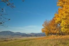 Liptovsky Mikulas, Haj - Nicovo, Slovakia. Interesting colors of autumn on Haj - Nicovo Stock Photography