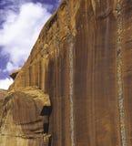 Liquen, barranco de Escalante, Utah Imágenes de archivo libres de regalías
