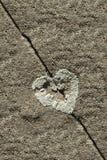 Liquen en la forma de corazón en la piedra arenisca Foto de archivo libre de regalías