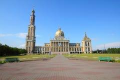Liquen, Polonia fotos de archivo libres de regalías