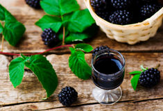 Liqueur from blackberry in a shot glass. Style rustic. selective focus royalty free stock photos