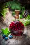 Liqueur made of alcohol and blueberries Stock Image