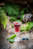 Liqueur made of blueberries and alcohol Royalty Free Stock Photography