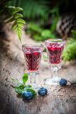 Liqueur made of blueberries and alcohol in forest Royalty Free Stock Photography