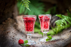 Liqueur made of wild strawberry and alcohol Stock Photography
