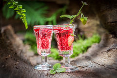 Liqueur made of wild strawberry and alcohol in forest Stock Photography