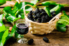 Liqueur from malberry in a shot glass Royalty Free Stock Image