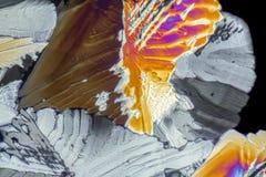 Liqueur micro crystals Stock Photos