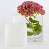 Liquid hand soap and flowers Stock Image