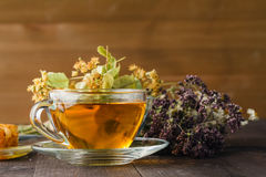 Liquid honey with honeycomb and tea cup inside bunch of dry herb Royalty Free Stock Photo