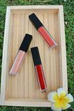 Liquid lipstick, Lip gloss in elegant glass bottle with black lid, closed and open container with brush stock photo