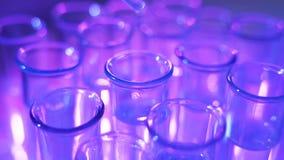 Liquide chimique de chute aux tubes à essai pour l'essai en laboratoire, recherche de laboratoire de science banque de vidéos