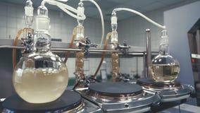 Liquide de ébullition dans un flacon dans le laboratoire banque de vidéos