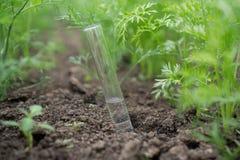 Liquide en articles chimiques sur un fond des usines, des engrais ou des pesticides dans le jardin image stock