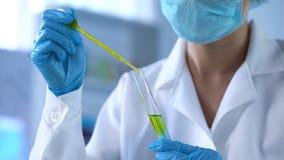 Liquide jaune d'égoutture de scientifique dans le tube de laboratoire et regarder la réaction, expérience photographie stock libre de droits