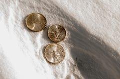 Liquidez fría - monedas de plata en nieve Foto de archivo libre de regalías
