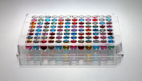 liquido del microplate dei 96 pozzi Fotografia Stock